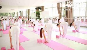 葆姿瑜伽培训基地